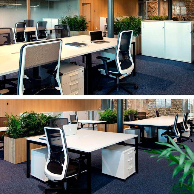 WIND Bürodrehstuhl | Wollbezug VELITO - Hellgrün meliert