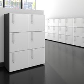 Spind | Schließfach NOVA mit 6 Schließfächern, (BxH) 800 x 1.092 mm, Anthrazit-Weiß