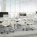 ONE H Schreibtisch   Manuell höhenverstellbar, 1600 x 800 mm, Nordeiche grau